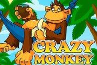 Видеослот Обезьянки (Crazy Monkey) играть в демо-версию